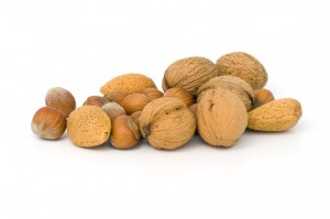 walnut - omega 3 fatty acid source
